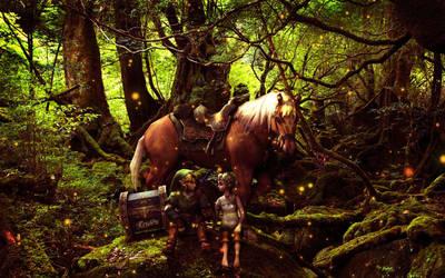 Link and Llia by Raffael101