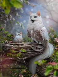 Catowl's Nest by LadyEvilArts