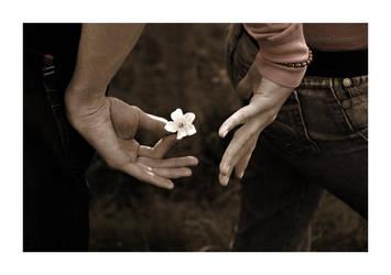 Romance by Faylinn
