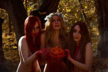 TW:WH - Ladies Of The Woods by MilliganVick