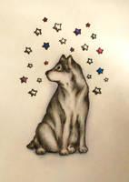 Stars by DarkRaFino