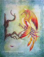Phoenix Landing by OneCrazyCleric