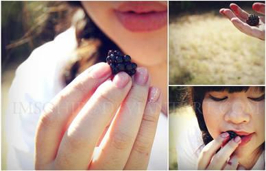 blackberries by imsohip