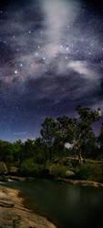 Giraween Nights by greykonos