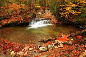 Autumn Pool by Celem