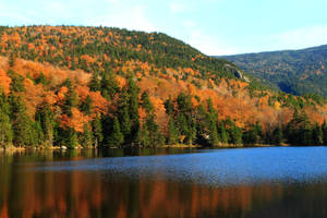 Saco Lake in Autumn by Celem