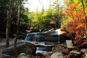 Autumn Forest Falls by Celem