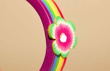 Rainbow by Shazy8