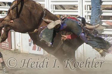 2013-06-15-s2-410 by Heidi-Koehler