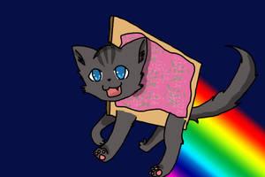 Nyan Cat by XXnightstreamXX