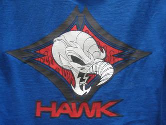 Hawk Screen by mattlorentz
