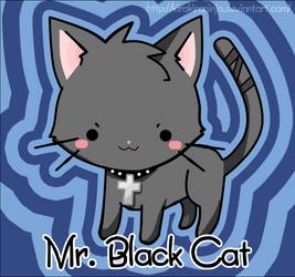 Black Cat by KiraKiraNinja