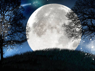 Moonlit Night by JulieLangford