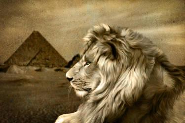Sphinx by JulieLangford