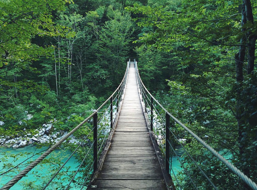 Bridge by ATAPLATA