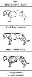 Tiger by drawing3steps