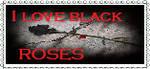 I Love Blackroses by blackroselover