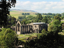 Bolton Priory: nature and building forming beauty by ahappierlife