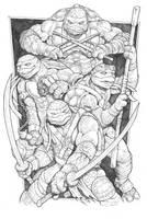 Teenage Mutant Ninja Turtles by RubusTheBarbarian