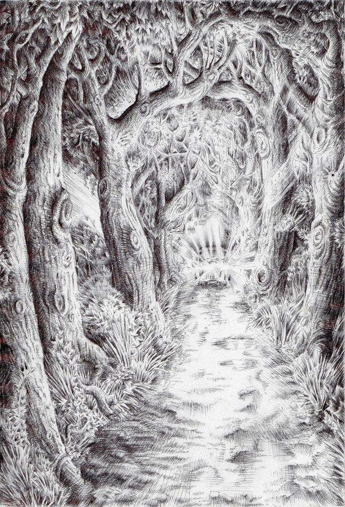 The drive through Renshaw Forest by Black--Mountain