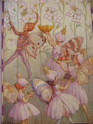 fairies by TerraAriaFuocoAcqua