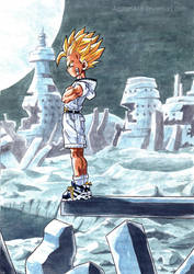 Gohan resubmited with better resolution by AgataKa19