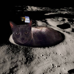 Mooncat by SpaceLaserCats