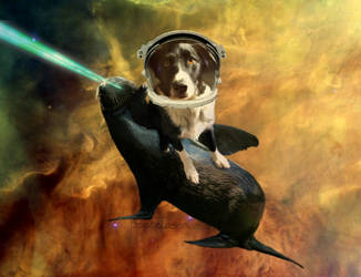 Laser Sea Lion by SpaceLaserCats