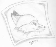 Fox Head Shot by KyteTheFox