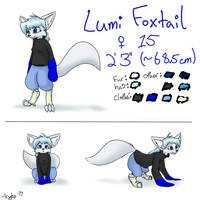 Lumi Foxtail Character Sheet by KyteTheFox
