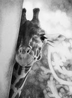 Giraffe by kaytii