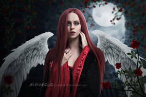 Army of angels: Angel of Roses by urbania13