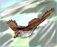 Lunahawk-94 Art-trade: Talon by IceDragonhawk