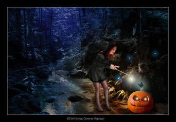 The sorcerer by notoiara