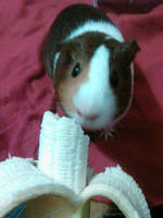 Banana! by SNlCKERS