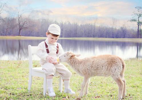 Boy and lamb by Jeni-Sue