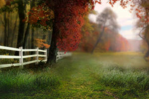 Autumn begins premade by Jeni-Sue