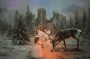 Winters Grace by Jeni-Sue