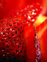 .strawberry. by witchlady750