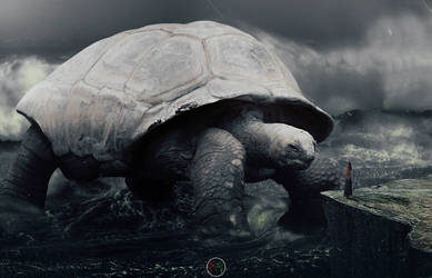 Huge Turtle by Atito20