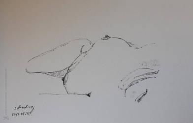 62 Sketchbook by schachay