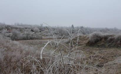 Winter feeling II. by schachay