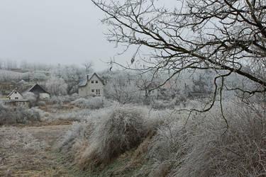 Winter feeling III. by schachay