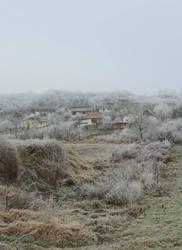 Winter feeling VI. by schachay