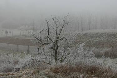 Winter feeling IX. by schachay