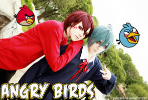 Angry birds: Red + Blue = 2 hot bishies by palecardinal