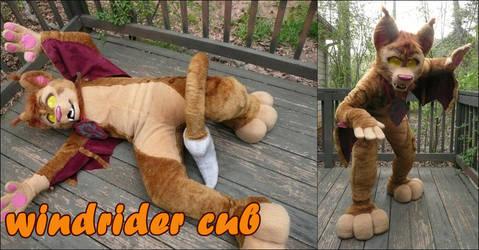 baby windrider by joecifur