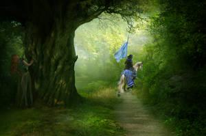 Fleeing by EnchantedHawke