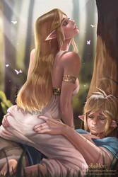 Zelda X Link by Hoobamon