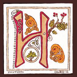 Letter H by ladyfireoak